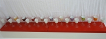Exposition Nest